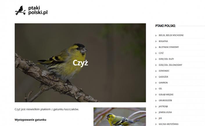 ptakipolski-strona-706x435-c-default