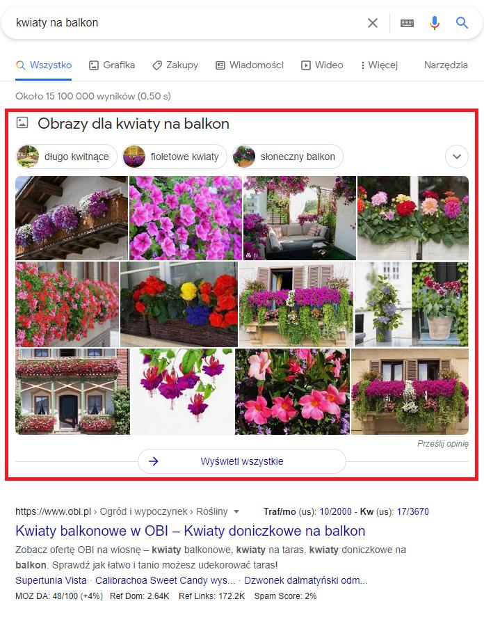 grafika-w-wyszukiwarce